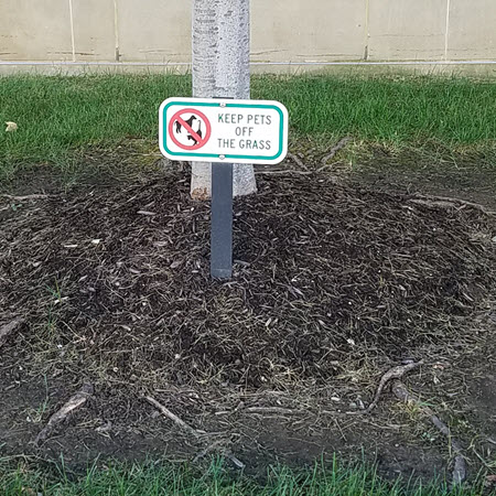 PKE-16740 Keep Pets Off The Grass Sign